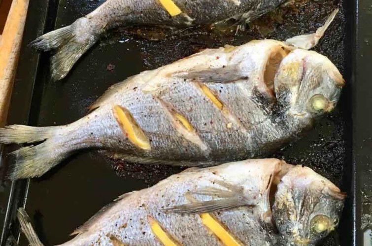приготовление рыбы на яхте фото
